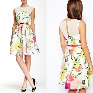 Ted Baker Iberis Flowers at High Tea Floral Small